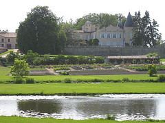 Chateau Lafite Image