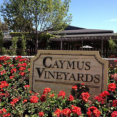 Caymus Vineyards Image