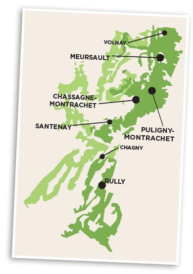 Côtes de Beaune et Côtes Chalonnaise