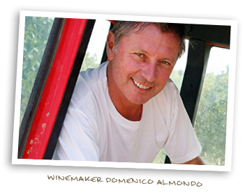 Winemaker Domenico Almondo