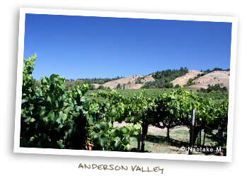 Anderson Valley