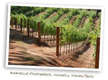 Aurielle Vineyards Howell Mountain