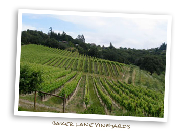Baker Lane Vineyards