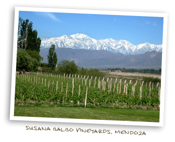 Susana Balbo Vineyards, Mendoza