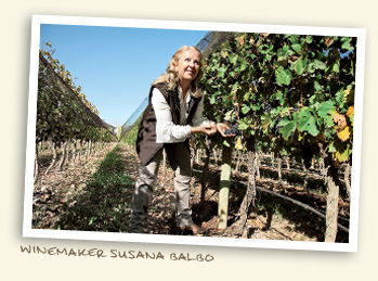 Winemaker Susana Balbo