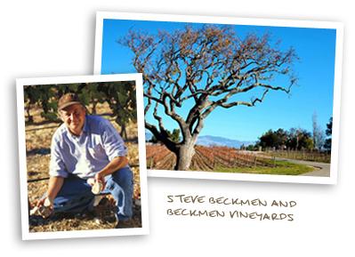 Steve Beckmen and Beckmen Vineyards