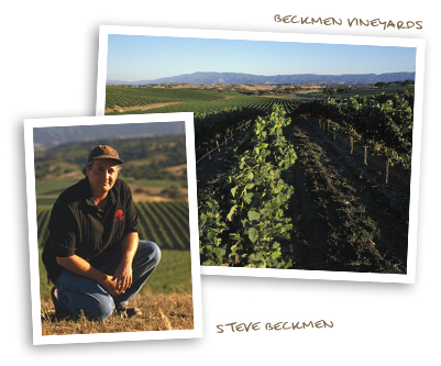 Steve Beckmen and Beckmen Vineyards