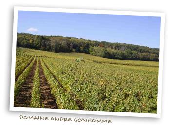 Domaine Andre Bonhomme