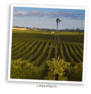 Carneros