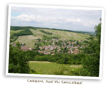 Carrou, Bue en Sancerre