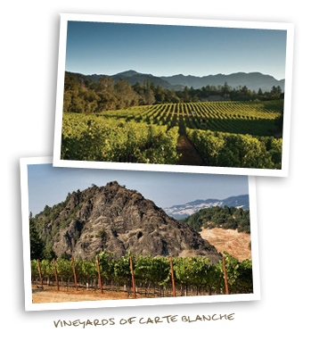 Vineyards of Carte Blanche