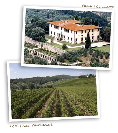 I Collazzi Vineyards & Villa I Collazzi