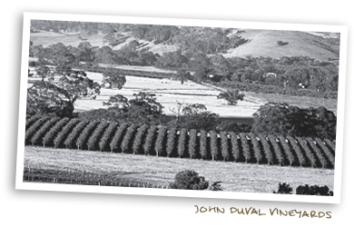 John Duval Vineyards