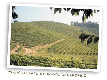 The Vineyards of Roberto Ferraris