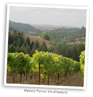 Freestone Vineyards