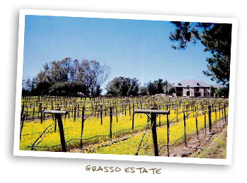 Grasso Estate
