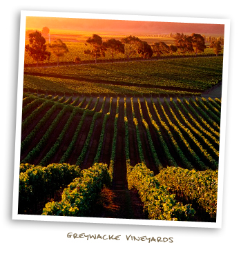 Greywacke Vineyards