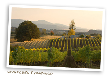 Ridgecrest Vineyard