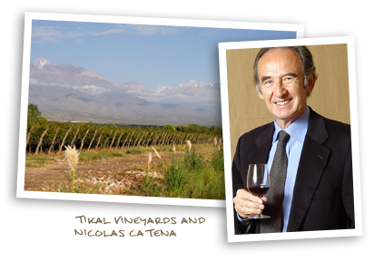 Tikal Vineyards and Nicolas Catena
