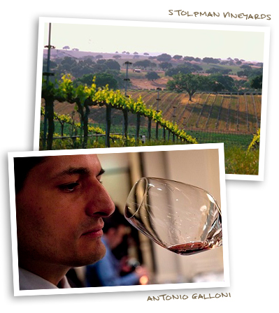 Stolpman Vineyards and Antonio Galloni