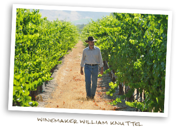 Winemaker William Knuttel