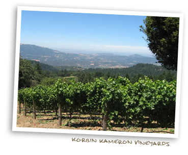 Korbin Kameron Vineyards