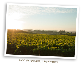 Lee Vineyard, Carneros