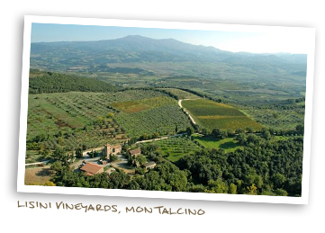 Lisini winery, Montalcino