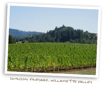 Johnson vineyard, Willamette valley