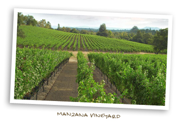 Manzana Vineyard