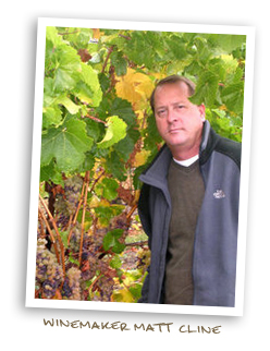 Winemaker Matt Cline