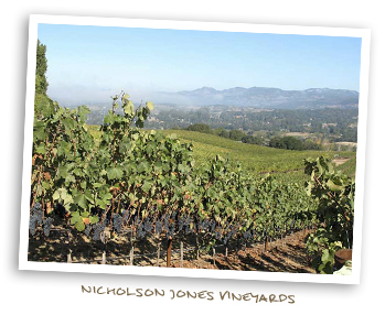 Nicholson Jones Vineyards