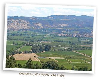 Oakville Napa Valley
