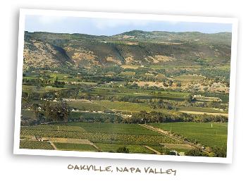 Oakville, Napa Valley