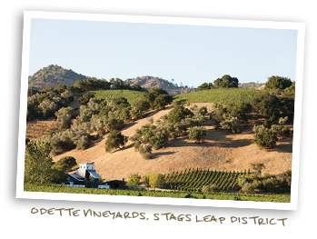 Odette Vineyards, Stags Leap District