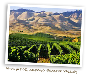 Vineyards, Arroyo Grande Valley