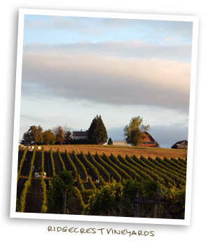 Ridgecrest Vineyards