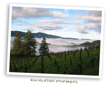 Rockledge Vineyards