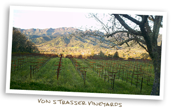 Von Strasser Vineyards