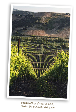 Dierberg Vineyards, Santa Maria Valley