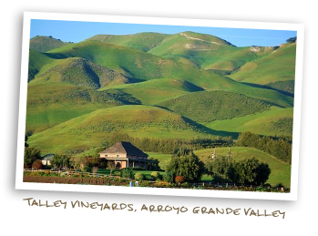 Talley Vineyards, Arroyo Grande Valley