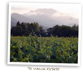 Te Mãnia Estate Vineyards