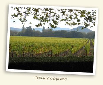 Teira Winery