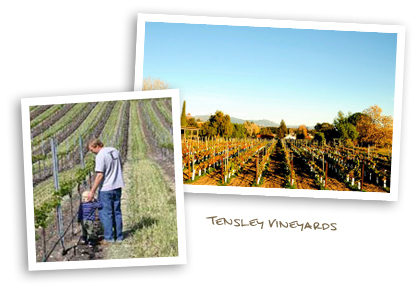 Tensley Vineyards