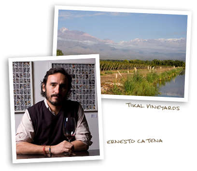 Tikal Vineyards and Ernesto Catena