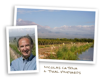 Nicolas Catena & Tikal Vineyards