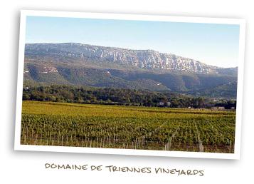 Domaine de Triennes Vineyards