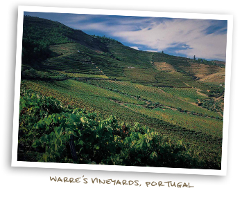Warre's Vineyards, Portugal