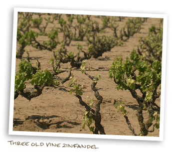 Three Old Vine Zinfandel