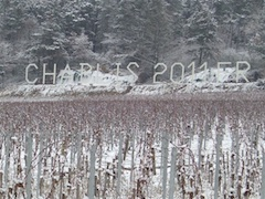 Domaine Pinson, Chablis